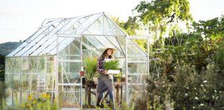 Desain Interior Green House Yang Cantik Dan Nyaman